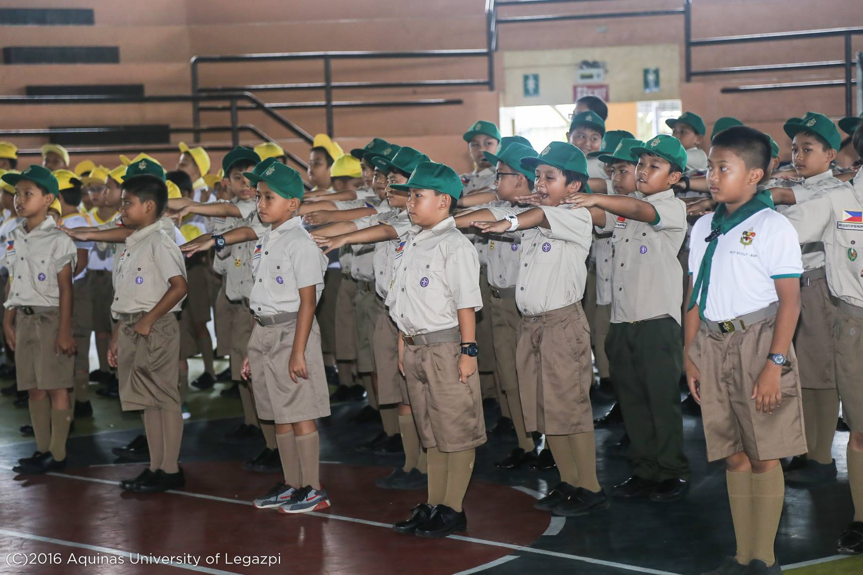 Boy/Kab Scout Investiture