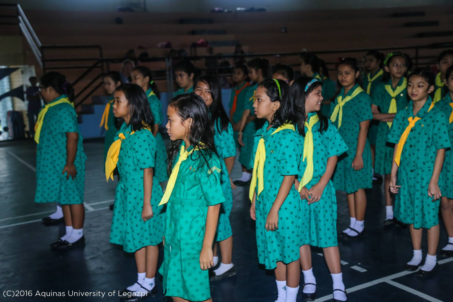 Girl/Star Scout Investiture